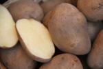 Ceny unijnych ziemniaków