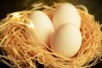 Ceny jaj spożywczych w Polsce (02.05.2021)