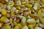 Ceny zbóż na giełdach towarowych (6.10.2019)