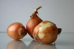 Ceny cebuli w Polsce (31.03.2019)