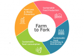 Strategia Farm to Fork