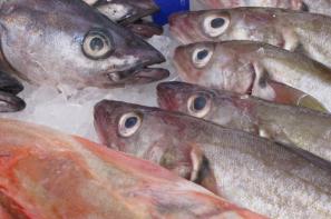 Wzrost cen ryb, owoców morza i przetworów