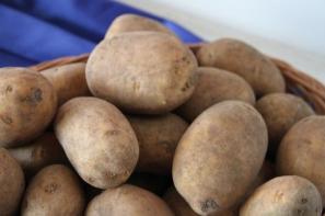 Niekorzystne ceny wczesnych ziemniaków w kwietniu 2017 r.