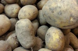 Rekordowy poziom cen ziemniaków