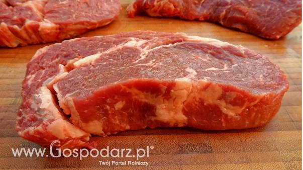 Ceny mięsa wołowego, wieprzowego i drobiowego (10.03.2019)