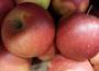 Światowe zbiory jabłek w sezonie 2017/2018 są niższe o 3%