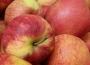 Ceny jabłek w górę