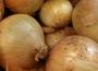 Ceny cebuli w Polsce (04.04.2021)