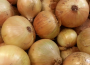 Ceny cebuli w Polsce