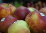 Ceny owoców w Polsce (18.10.2016)