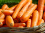 Mniejsza produkcja warzyw gruntowych
