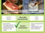 Produkty zwierzęce niezbędnym składnikiem diety