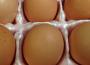 Stopniowy spadek cen jaj