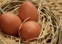 Ceny jaj spożywczych w Polsce (10.10.2021)