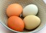 Ceny jaj spożywczych w Polsce (06.06.2021)