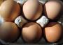 Ceny kurcząt całych i jaj konsumpcyjnych w UE (2.01.2017)