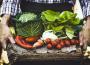 Ocena popytu na produkty rolne
