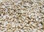 Podsumowanie tygodnia na giełdowym rynku zbóż (22-26.08.2016)