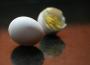 Ceny kurcząt całych i jaj konsumpcyjnych w UE i Polsce (12.09.2016)