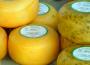 Produkcja artykułów mleczarskich