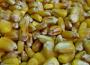 Ceny zbóż na giełdach towarowych (12.11.2017)