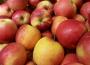 W pierwszej połowie sezonu ceny jabłek deserowych spadły o 30%