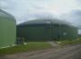 Biopaliwa stałe