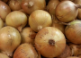 Ceny cebuli w Polsce (04.07.2021)