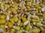 Ceny zbóż na giełdach towarowych (28.10.2018)
