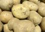 Mniejszy obszar upraw ziemniaków