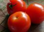 Mniejsze plony pomidorów