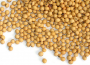 Notowania giełdowe zbóż i oleistych pozostają stabilne
