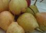 Ceny owoców w Polsce (21.09.2016)