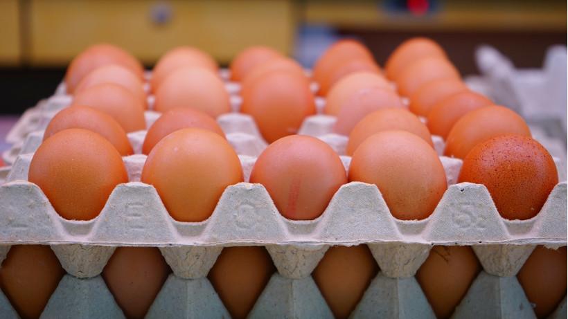 Ceny jaj spożywczych w Polsce (21.03.2021)