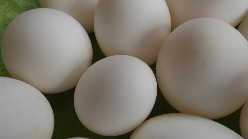 Ceny jaj spożywczych w Polsce (02.08.2020)