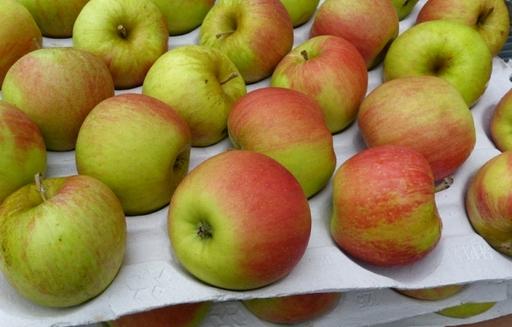W maju zapasy jabłek w Polsce były o 30% wyższe niż rok temu. Ceny spadły o połowę