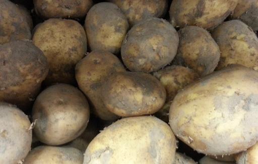 Ceny ziemniaków w Polsce (28.07.2016)