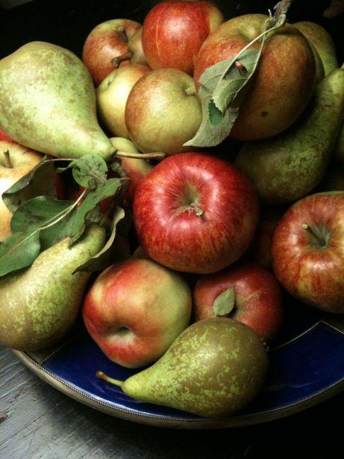 Ceny jabłek i gruszek w Polsce (27.11.2016)