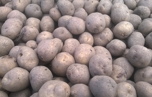 Ceny ziemniaków w Polsce (17.12.2017)