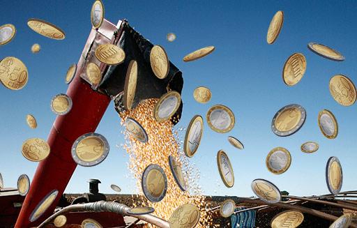 Kapitał spekulacyjny odpowiada za zwyżki notowań zbóż i soi