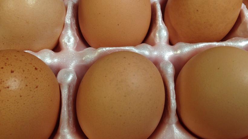 Ceny w UE oraz polski eksport jaj konsumpcyjnych