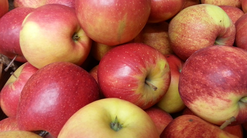 Jabłka o 25% tańsze niż przed rokiem