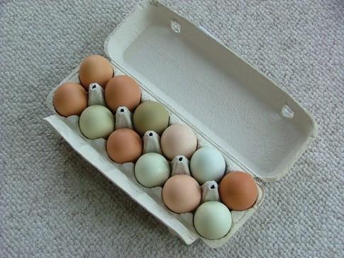 Ceny kurcząt całych i jaj konsumpcyjnych w UE i Polsce (30.05.2016)