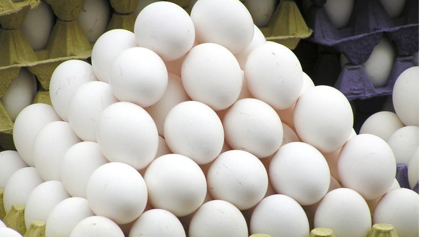 Ceny jaj spożywczych w Polsce (26.11.2017)