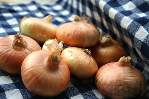 Ceny warzyw i pieczarek w Polsce (02.08.2016)