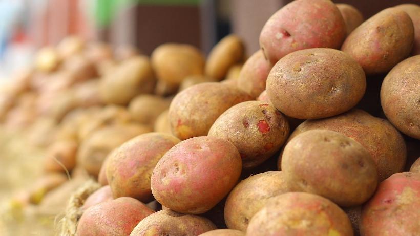 Ceny ziemniaków w Polsce (31.10.2017)