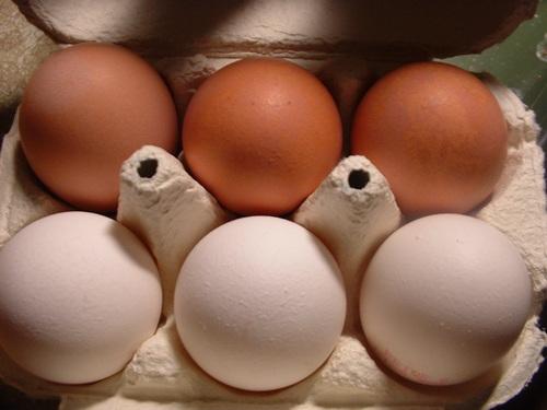 Ceny kurcząt całych i jaj konsumpcyjnych w UE (29.08.2016)