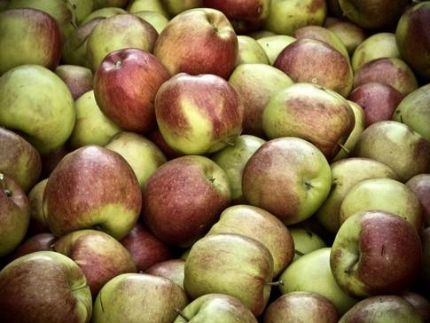 Ceny jabłek i gruszek w Polsce (15.11.2016)
