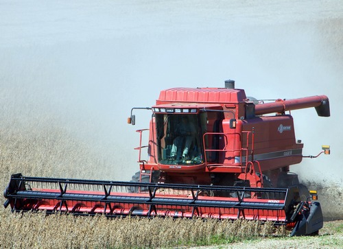 Notowania zbóż i oleistych. Kontrakty na oleiste traciły na wartości na skutek żniw w Brazylii (21.02.2017)