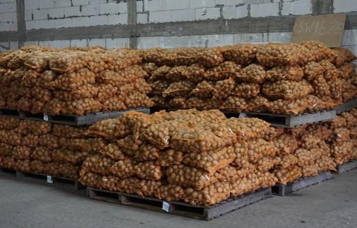 Ceny ziemniaków w Polsce (12.11.2017)